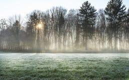 Mistical-Licht Stockbild