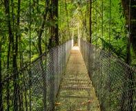 Mistico Arenal Hanging Bridges Park stock photos