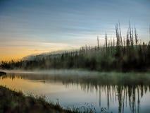 Misticrivier met weerspiegelde mist Stock Foto