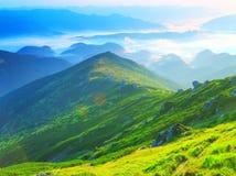 Mistig berglandschap in de Karpaten Stock Foto