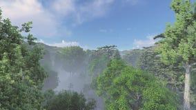 Mistig bos in de dag Royalty-vrije Stock Afbeeldingen