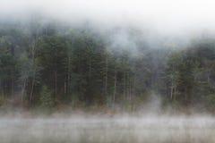 Mistig Bos door Meer Royalty-vrije Stock Foto