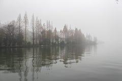 Mistig bos op het meer Royalty-vrije Stock Afbeeldingen