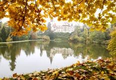Mistig de herfstlandschap Kasteel met bezinning in vijver en sinaasappel gevallen bladeren Pruhonice, Kasteel dichtbij Praag, Tsj Royalty-vrije Stock Fotografie