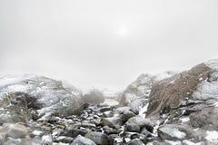 Mistig de winterlandschap Royalty-vrije Stock Foto's