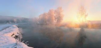 Mistig de winterlandschap Stock Foto's