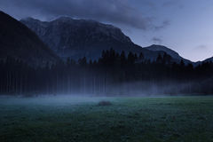 Mistig en nevelig weiland met bos en berg op achtergrond Stock Fotografie
