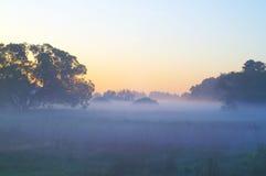 Mistig landschap Royalty-vrije Stock Fotografie