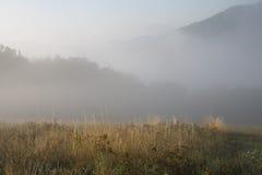 Mistig landschap royalty-vrije stock afbeeldingen