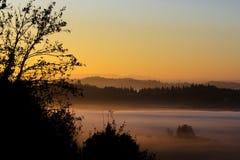mistig landschap Stock Foto's