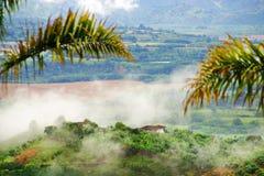 Mistig landschap in Buenavista, Quindio stock foto's