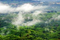 Mistig landschap in Buenavista, Quindio royalty-vrije stock afbeeldingen
