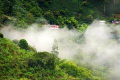 Mistig landschap in Buenavista, Quindio stock afbeelding