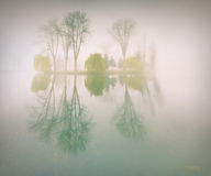 Mistig ochtendlandschap in het de herfstpark stock afbeelding