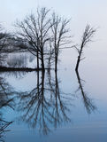 Mistig weerspiegelend eiland op kalm glazig water Royalty-vrije Stock Foto