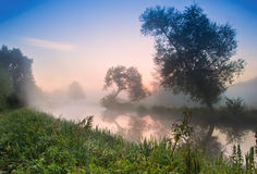 Mistig zonsopganglandschap over rivier Royalty-vrije Stock Foto