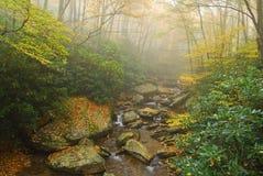 Mistige Appalachian Stroom met het Gebladerte van de Herfst Royalty-vrije Stock Foto