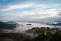 Mistige bossen van Boheems Zwitserland, Tsjechische republiek royalty-vrije stock afbeelding