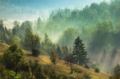 Mistige dageraad in bergen Stock Foto's