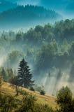 Mistige dageraad in bergen Royalty-vrije Stock Foto