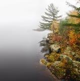 Mistige de herfstdag bij een rivier Stock Foto