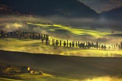 Mistige de ochtend, de landbouwgrond en de cipresbomen van Toscanië Italië royalty-vrije stock afbeelding