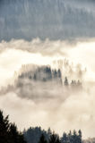 Mistige de winterochtend Royalty-vrije Stock Foto