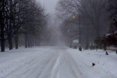Mistige de winterochtend in een stadspark met snow-covered stegen royalty-vrije stock afbeelding