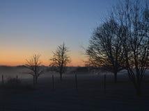 Mistige de winterochtend en naakte bomen Stock Foto