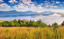 Mistige de zomerochtend in bergen Royalty-vrije Stock Fotografie