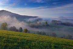 Mistige de zomerochtend in de bergen Groene boom op de heuvel met mist Boom van Sumava-berg, Tsjechische Republiek Mist in het la Royalty-vrije Stock Fotografie