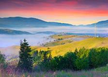 Mistige de zomerzonsopgang in Karpatische bergen Royalty-vrije Stock Foto