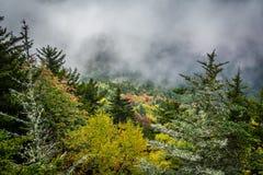 Mistige mening van Blauw Ridge Mountains van Grootvaderberg royalty-vrije stock foto
