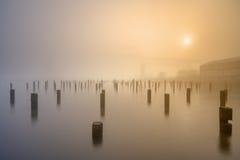 Mistige ochtend aan rivierkant Royalty-vrije Stock Fotografie