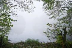 Mistige ochtend bij het meer stock foto