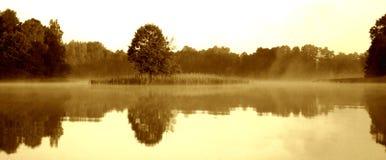 Mistige ochtend door het meer, VI royalty-vrije stock afbeeldingen