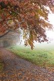Mistige ochtend in het park, de herfst Stock Foto