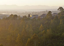 Mistige ochtend in hoogland Royalty-vrije Stock Foto