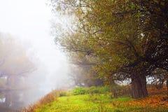 Mistige ochtend op de banken van de rivier Zagyva Royalty-vrije Stock Afbeelding
