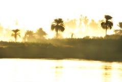 Mistige ochtend op de Nijl stock afbeelding