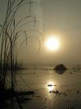 Mistige ochtend op meer Tulchinskom. stock foto's