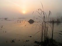 Mistige ochtend op Tulchinskom-meer. Stock Foto's