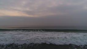 Mistige ochtend over het strand en de vliegende zeemeeuwen Dramatische overzeese zonsopgang Golven stock video