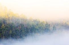 Mistige ochtendzonsopgang met bergachtergrond stock afbeelding
