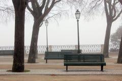 Mistige parkbomen en banken Stock Foto's