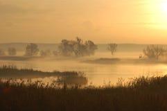 Mistige rivier bij schemer Royalty-vrije Stock Fotografie