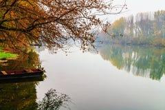 Mistige rivier en de herfstbomenbezinning, de rivier van Donau, Slowakije Royalty-vrije Stock Foto