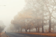 Mistige straat in de stad Royalty-vrije Stock Foto's