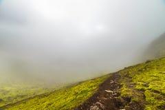 Mistige vallei met groen mos in IJsland stock foto