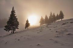 Mistige zonsondergang royalty-vrije stock fotografie